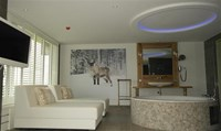 Wellness Suite - Hotel Vianen