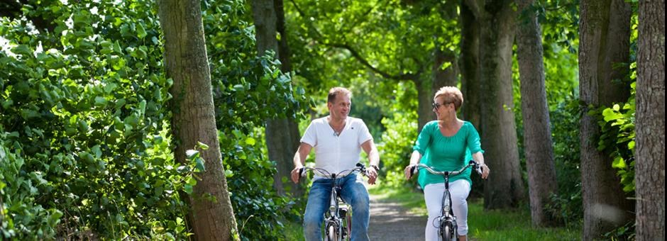 Rent a bike to join the beautiful nature - Hotel Vianen