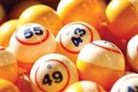 Bingo  - Hotel De Gouden Leeuw