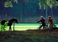 Rad fahren - Hotel Hengelo