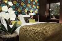Comfort kamers - Hotel Spier-Dwingeloo