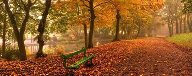 Hotel Den Haag - Nootdorp - Lovely Autumn Package 3 days