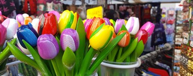 Hotel Schiphol - Happy Spring Package (4 days)