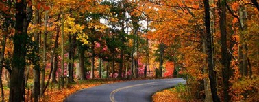 Hotel Almere - Awesome Autumn 4-day Package