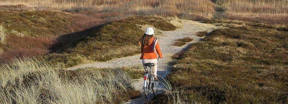 Cycling through the dunes... - Hotel Middelburg