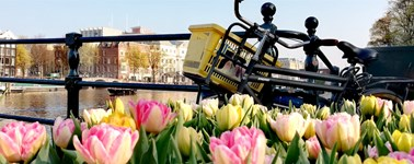 Hotel Oostzaan-Amsterdam - High Summer Package 4 days