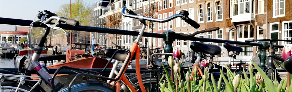 Enjoy a bike ride through the beautiful north Holland Landscape and Amsterdam