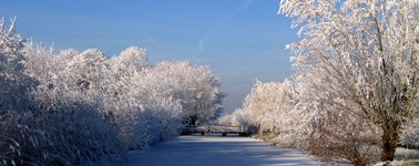 Hotel Oostzaan-Amsterdam - Winter arrangement 4-tage