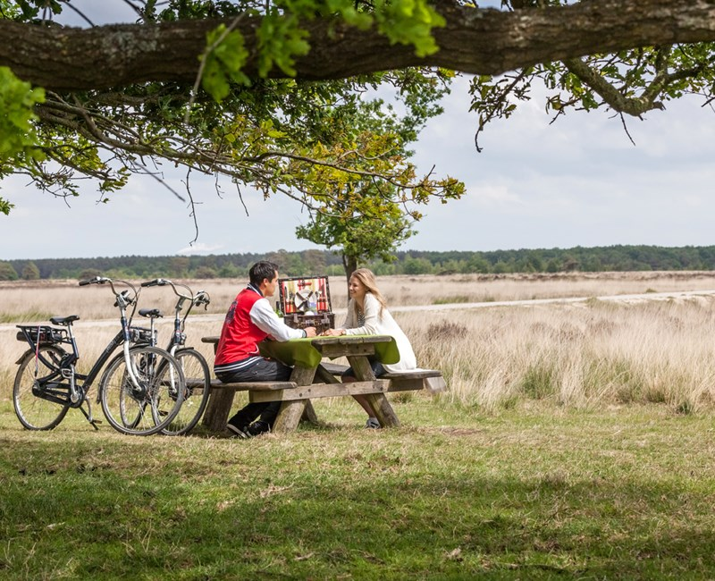 3 Gorgeouscycling routes through Drenthe