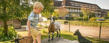 Hotel Assen - Sprightly Spring package
