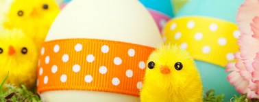 Hotel Den Haag - Nootdorp - Double Easter Package